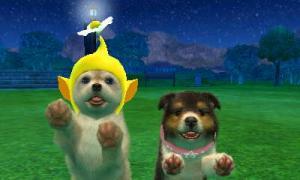 dogs0874.jpg