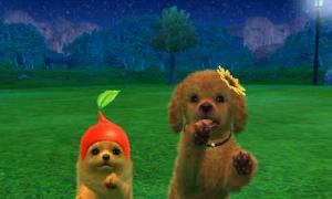 dogs0875.jpg