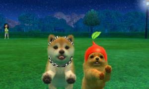 dogs0881.jpg