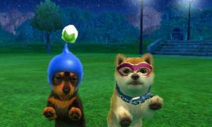 dogs0882.jpg