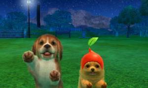 dogs0884.jpg