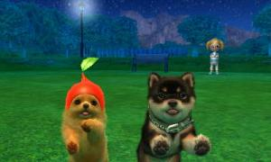 dogs0887.jpg