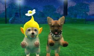 dogs0889.jpg