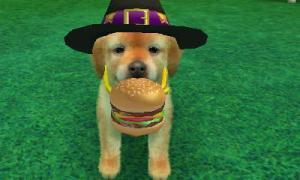dogs0896.jpg