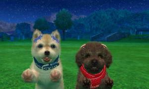 dogs0902.jpg