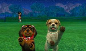 dogs0904.jpg
