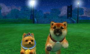 dogs0906.jpg