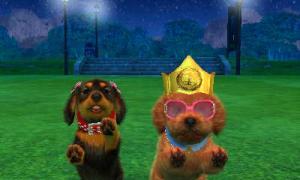 dogs0907.jpg