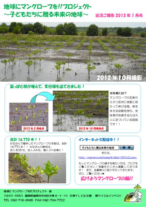 ご報告2013年1月号(小)