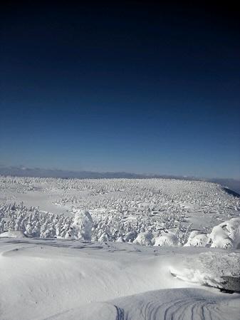 八幡平山頂付近06(2013.1.23)キヨ君撮影