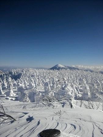 八幡平山頂付近08(2013.1.23)キヨ君撮影