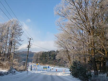 コマクサファーム付近(2012.12.12)