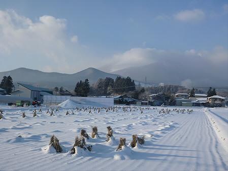 平笠の田んぼ01(2012.12.12)