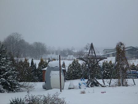 トトロの家01(2012.12.19)