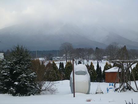 トトロの家01(2012.12.21)