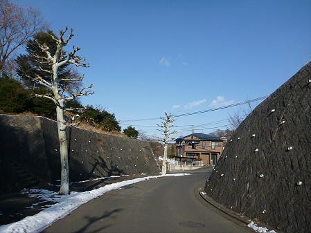 IGR婚活ツアー01(2012.12.23)