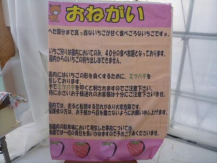 IGR婚活ツアー37(2012年12月23日)