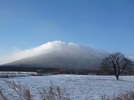 上坊牧野の一本桜01(2012.12.27)