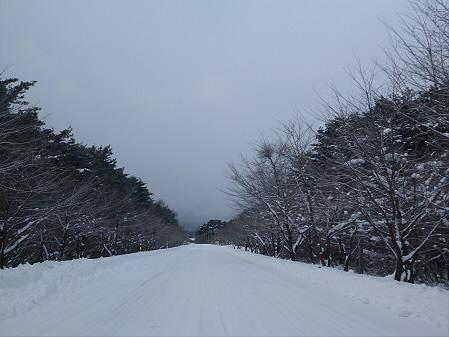 焼走り線01(2013.1.4)