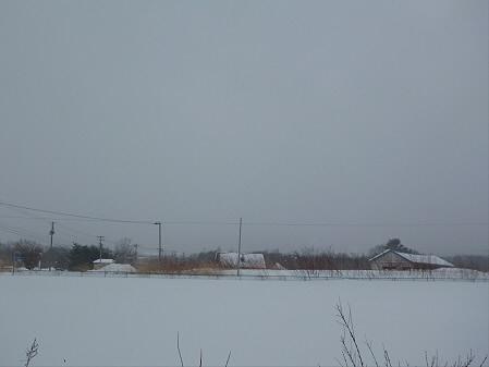 ビジターセンターから見る岩手山01(2013.1.4)