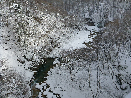 森の大橋06(2013.1.30)