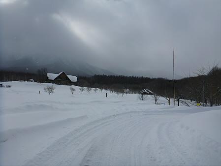 県民の森七滝03(2013.1.30)