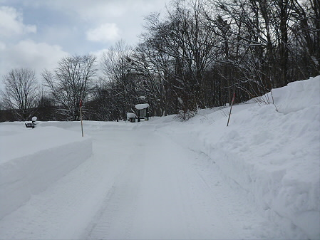 県民の森七滝04(2013.1.30)