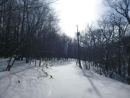 県民の森七滝26(2013.1.30)