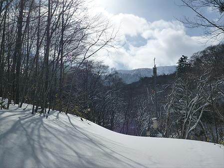 県民の森七滝29(2013.1.30)