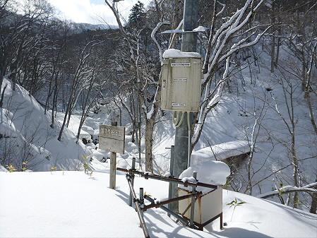 県民の森七滝30(2013.1.30)