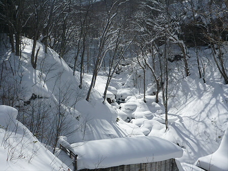 県民の森七滝32(2013.1.30)