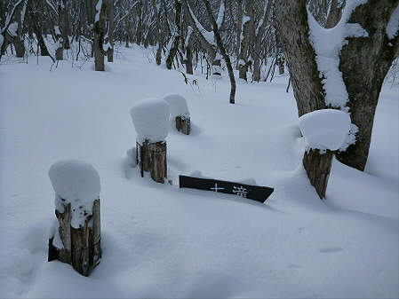 県民の森七滝36(2013.1.30)