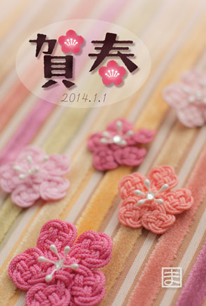 web-photo-20140103.jpg
