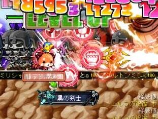Maple140101_021906.jpg