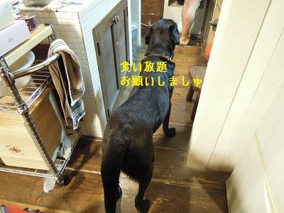 bb20120917-DSCN5580.jpg