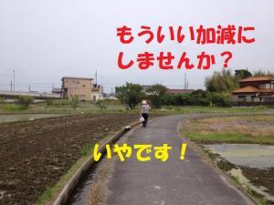 120701003_mt.jpg