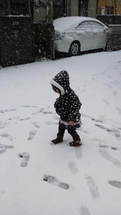 ブログ2 0115雪2