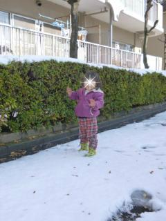ブログ2 0116雪 (1)
