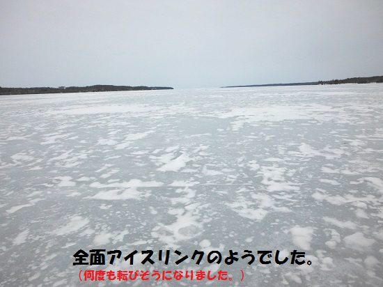130317_PIC014.jpg