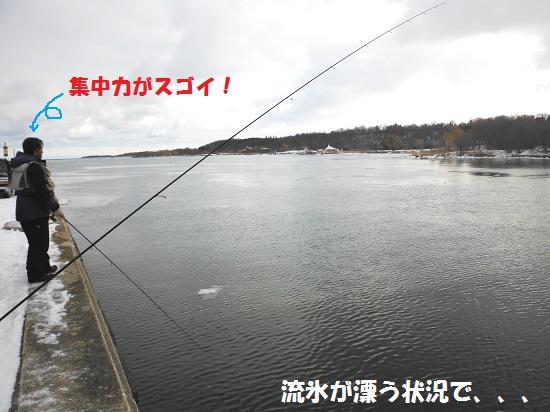 130401_PIC004.jpg