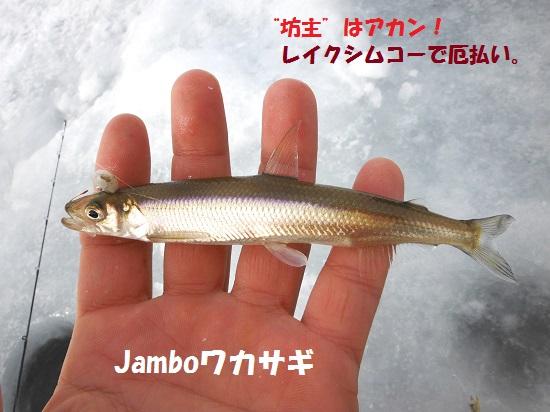 130401_PIC011.jpg