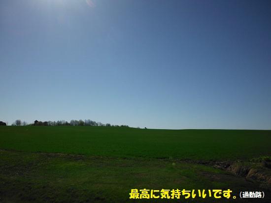 130505_PIC001.jpg
