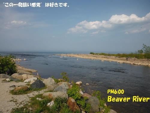 130526_PIC011.jpg
