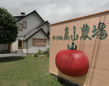 aoyamanouzyou2012-7.jpg