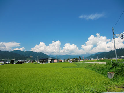 kokufu2012-8.jpg
