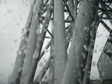 sukaituri-2012-6-9.jpg