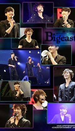 bigi-2012-8a.jpg
