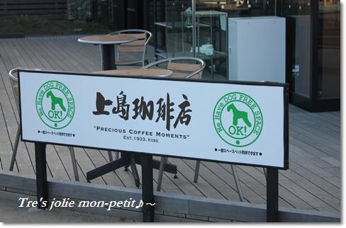 20121110-2東京