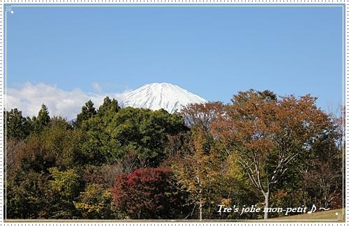 20121110-5東京