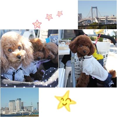 20121110-17東京